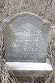 Cornelius M Davis