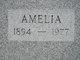 Profile photo:  Amelia Krieg