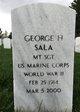 George H Sala