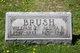 William James Brush