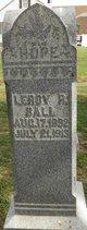 LeRoy Raymond Ball