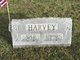 Profile photo:  Ada D <I>Bowman</I> Harvey
