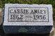 Profile photo:  Cassie Abley