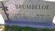 Ellis Wheeler Brumbeloe