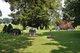 Aubie Wakefield Cemetery