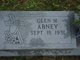 Glen M Abney