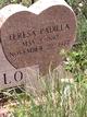 Teresa <I>Padilla</I> Sedillo