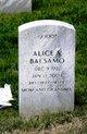 Profile photo:  Alice V. Balsamo