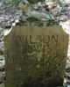 Wilson Lewis