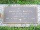 Profile photo:  Harold S Briggs