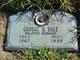 Profile photo:  George H. Dale