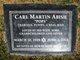 Carl Martin Abish