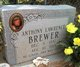 Anthony Lawrence Brewer