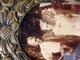 Profile photo:  John Quincy Adams