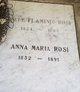 Profile photo:  Anna Maria Rosi