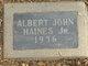 Profile photo:  Albert John Haines, Jr