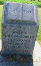 Mary E <I>Nichols</I> Fillenwarth
