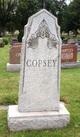 Profile photo:  Copsey