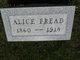 Profile photo:  Alice Fread