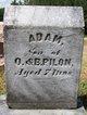 Profile photo:  Adam Pilon