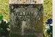 William Alexander Melton