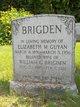 William George Brigden