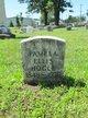 Pamela <I>Ellis</I> Hogle