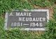 Profile photo:  A. Marie Neubauer