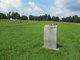 Archie-Newman-Wilson Cemetery