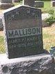 James P Mallison