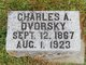 Profile photo:  Charles A Dvorsky