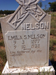 Emilia S. <I>Sandoval</I> Nelson