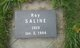 Roy Saline