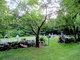 Brushwood Cemetery