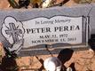 Peter Perea