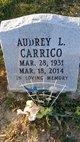 Profile photo:  Audrey Levonne <I>Smith</I> Carrico
