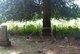 Cheningo Cemetery