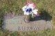 Profile photo:  Albert W Burow