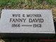 Fanny <I>Platkowitz</I> David