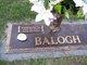 Profile photo:  Vernon L Balogh