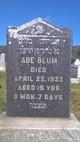 Profile photo:  Abe Blum