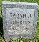 Profile photo:  Sarah Jane Schruis