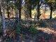 Altum Cemetery