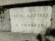 Profile photo:  Thoreau