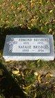 Natalie <I>Gougeon</I> Brisbois