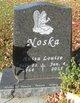 Profile photo:  Anita Louise <I>Stommes</I> Noska