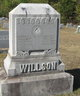 Anna Lillian <I>Boyd</I> Willson