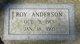 Roy Anderson