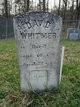 David Whitmer Sr.