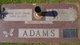 "William ""Bill"" Adams"
